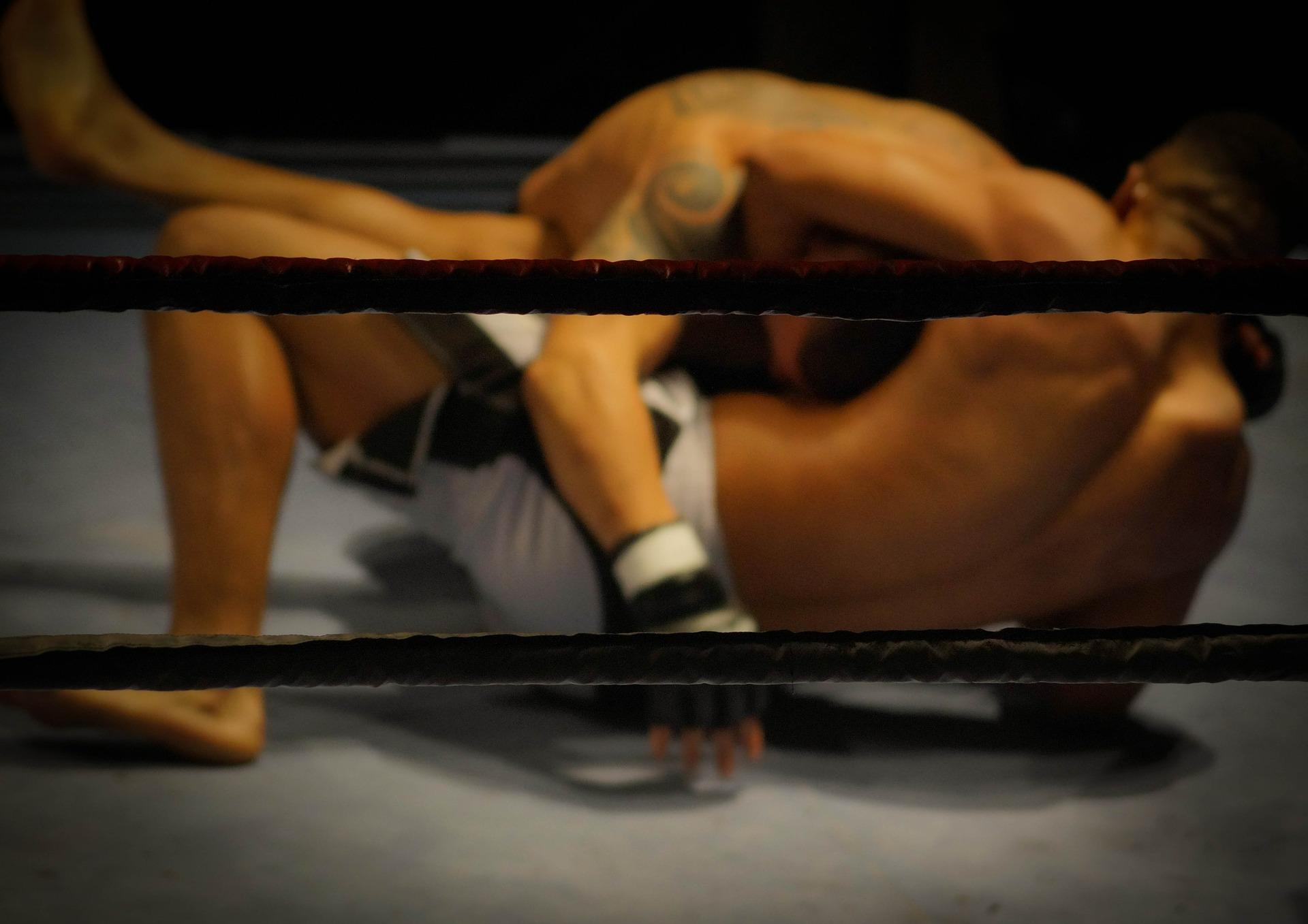 wrestling-384652_1920